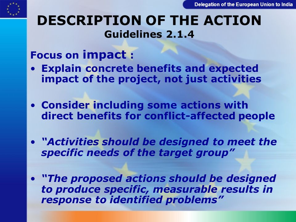 DESCRIPTION OF THE ACTION Guidelines 2.1.4