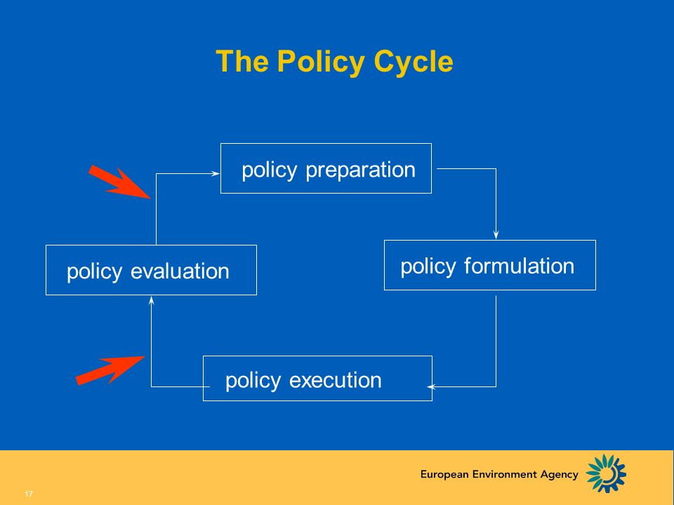 The Policy Cycle policy preparation policy formulation