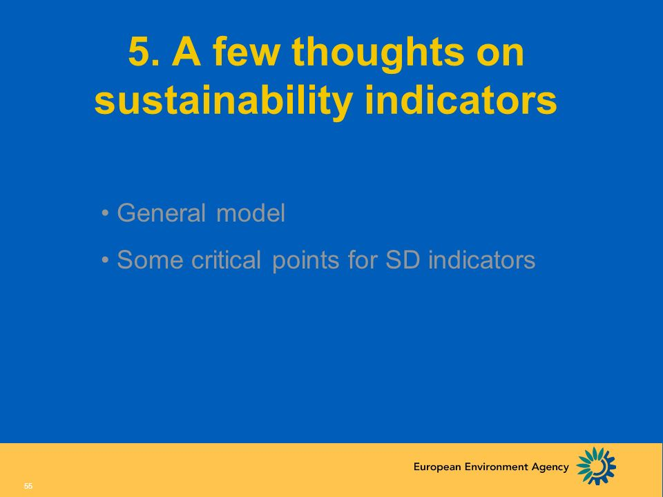 5. A few thoughts on sustainability indicators