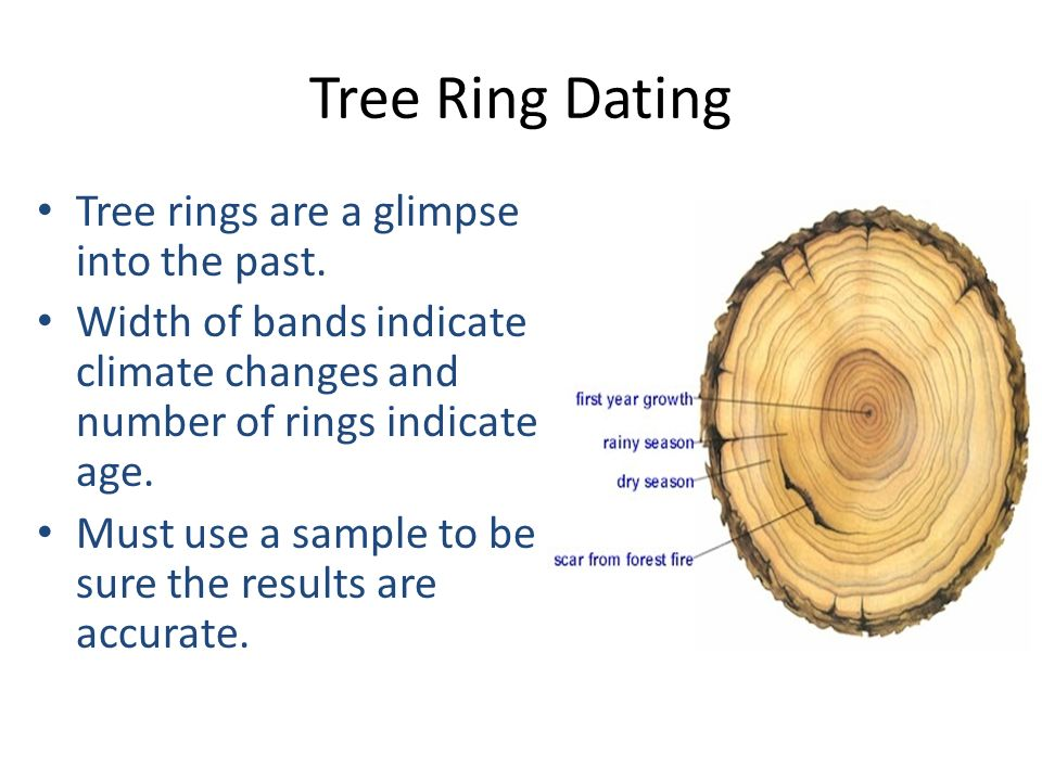 is tree ring dating accuracy Tree-ring dating, in a given region is there proof of carbon dating being wrong on what scientific assumptions is the accuracy of carbon dating predicated.