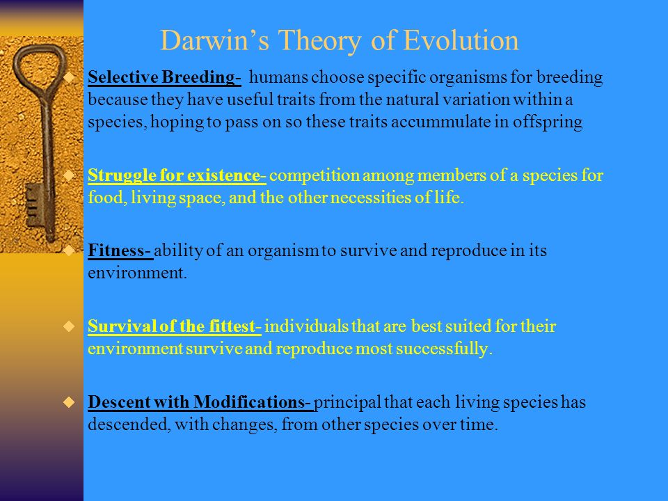 an analysis of the theory of evolution from a religious view The guides to anthropological theories and building from darwin's theory of evolution sir james frazer focused on the evolution of religion and.