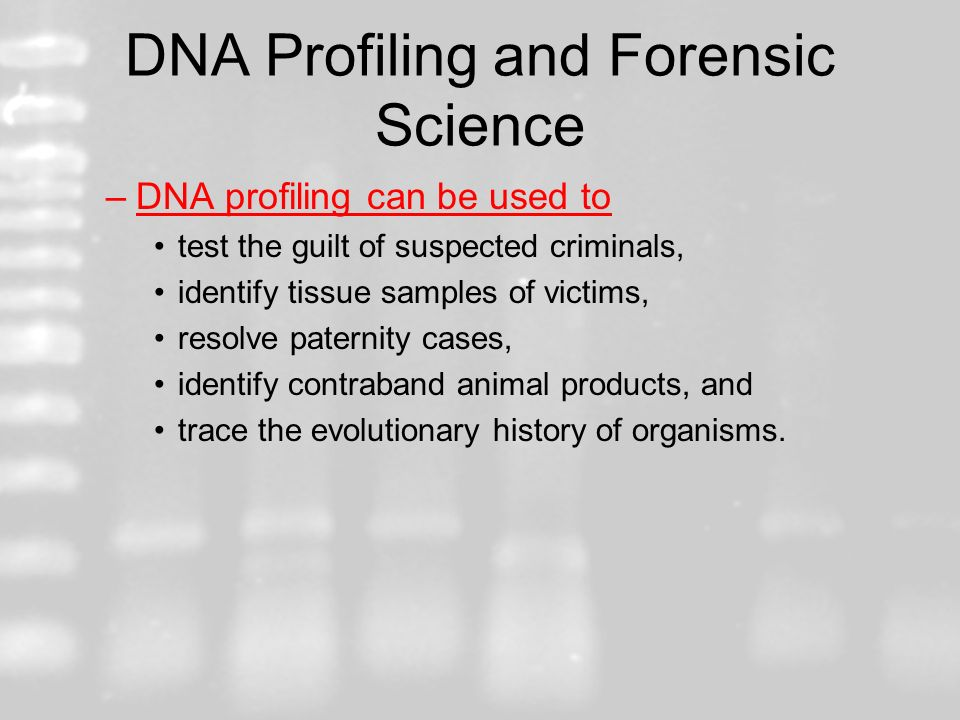 DNA Profiling and Forensic Science