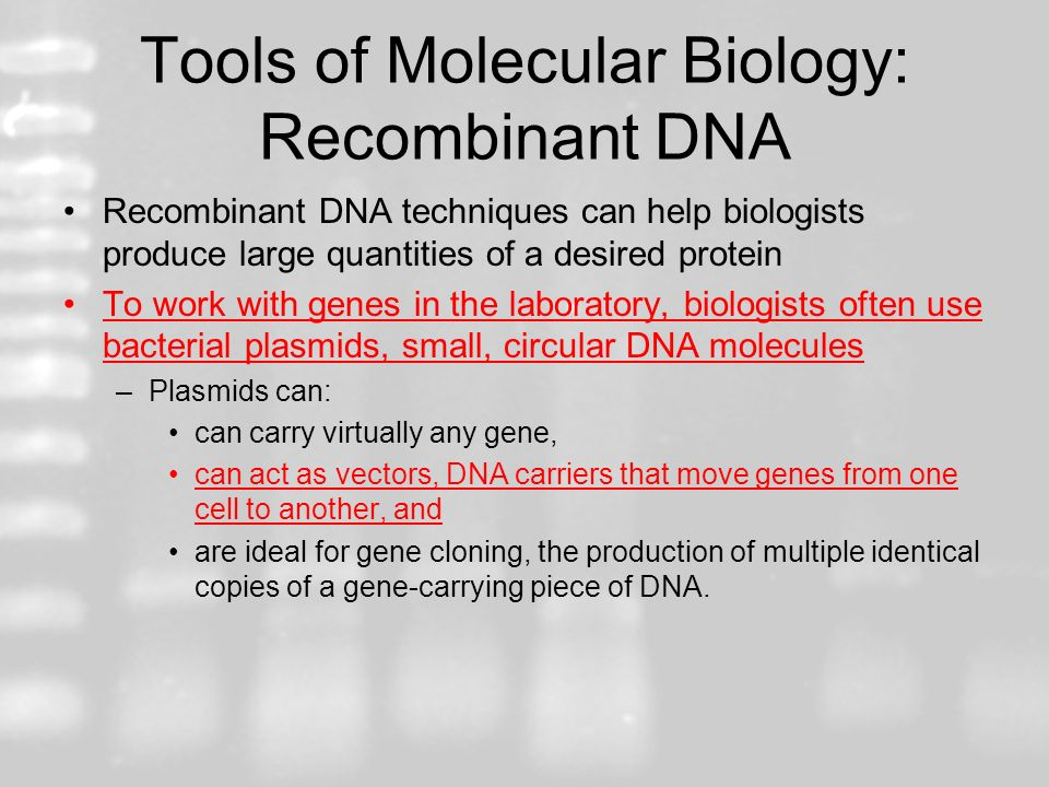 Tools of Molecular Biology: Recombinant DNA