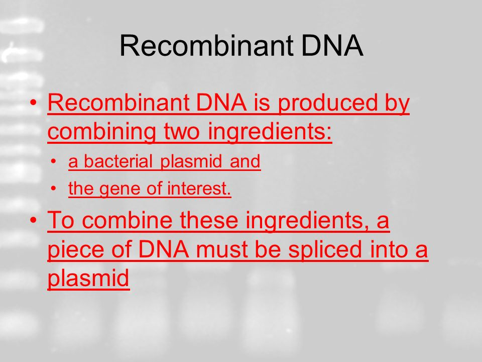 Recombinant DNA Recombinant DNA is produced by combining two ingredients: a bacterial plasmid and.