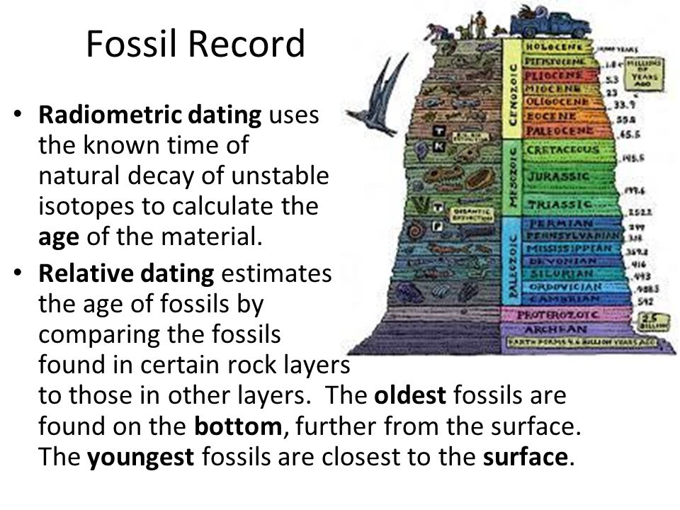 Differences Between Relative And Radiometric Hookup Of Fossils
