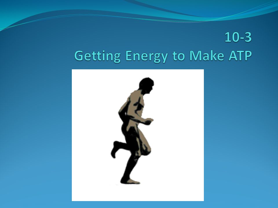 10-3 Getting Energy to Make ATP