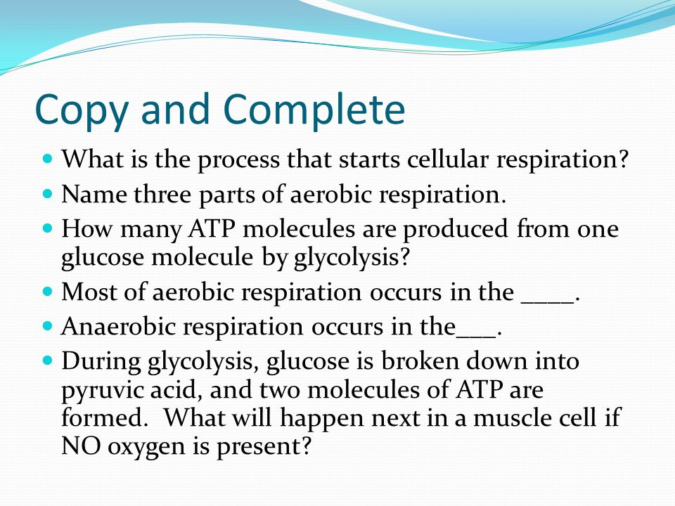 Copy and Complete What is the process that starts cellular respiration Name three parts of aerobic respiration.