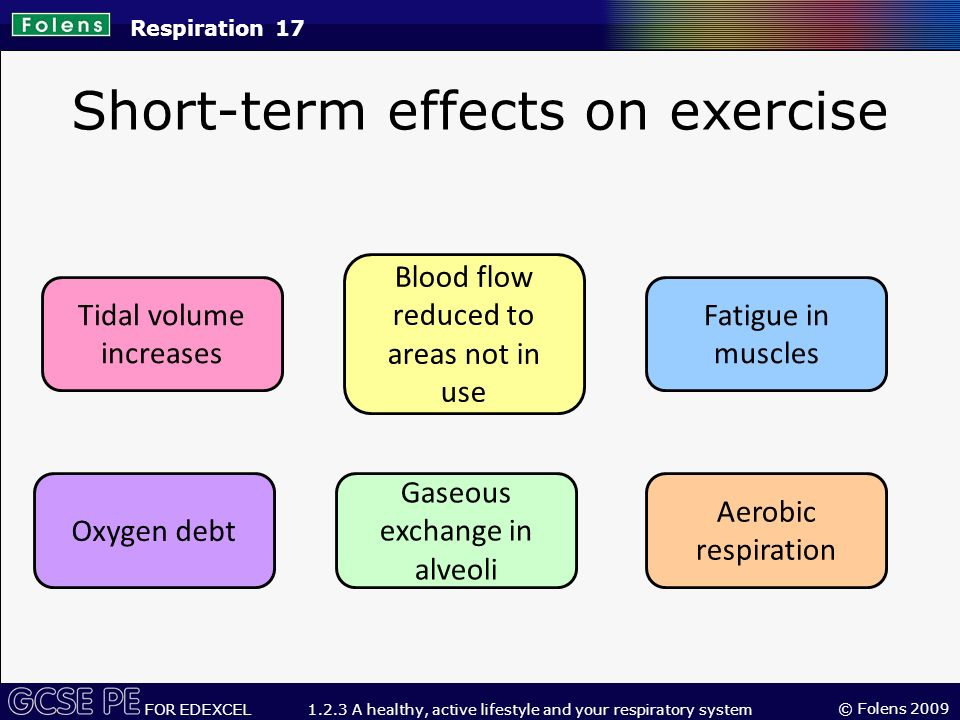 long term effects of exercise on