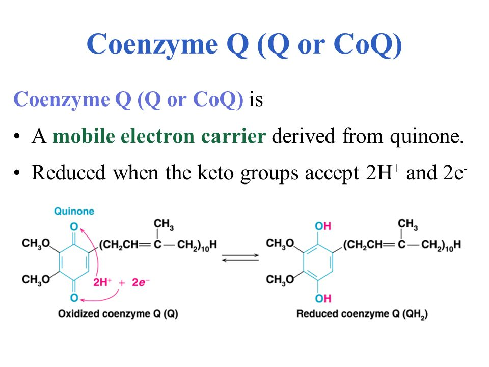 Coenzyme Q (Q or CoQ) Coenzyme Q (Q or CoQ) is