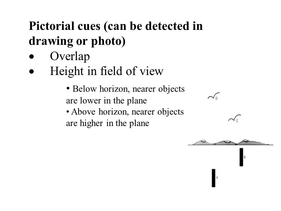 Pictorial cues (can be detected in drawing or photo) · Overlap