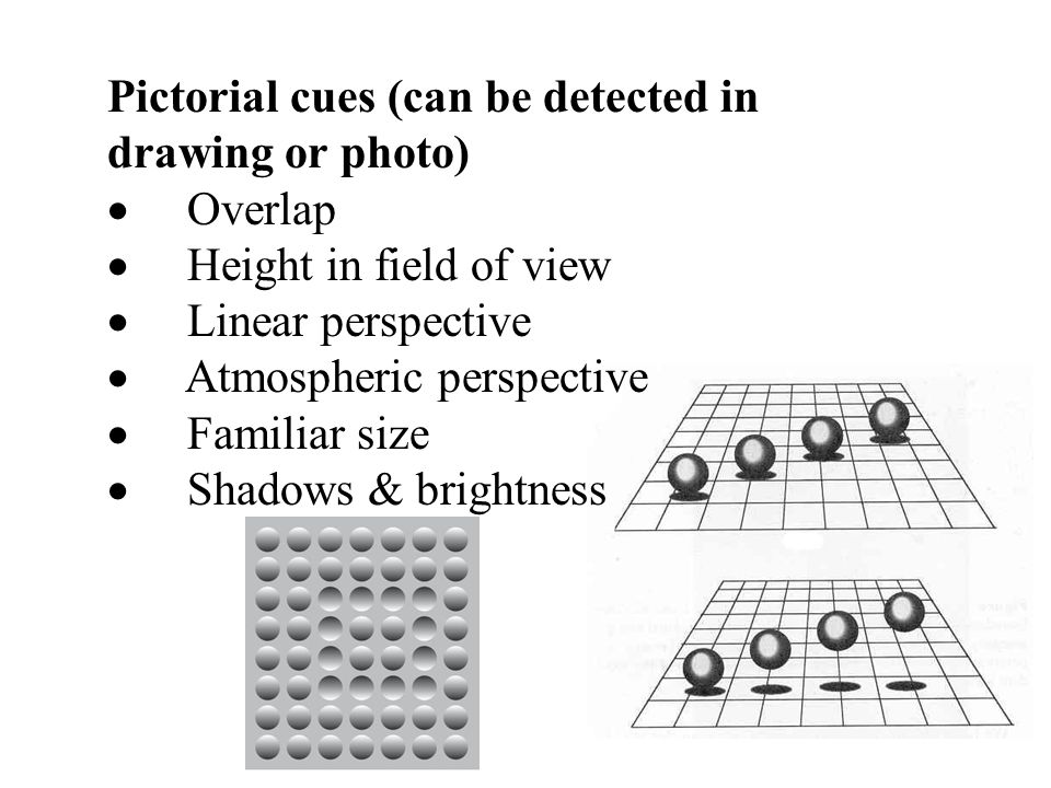 Pictorial cues (can be detected in drawing or photo)