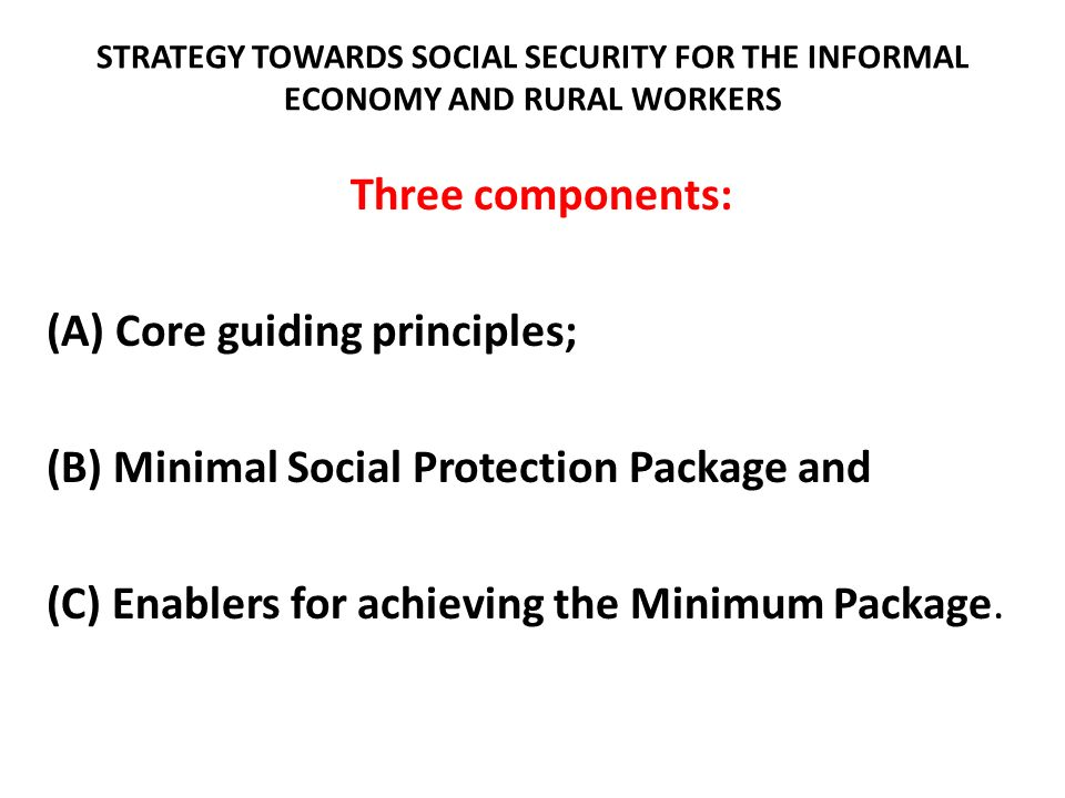 (A) Core guiding principles; (B) Minimal Social Protection Package and