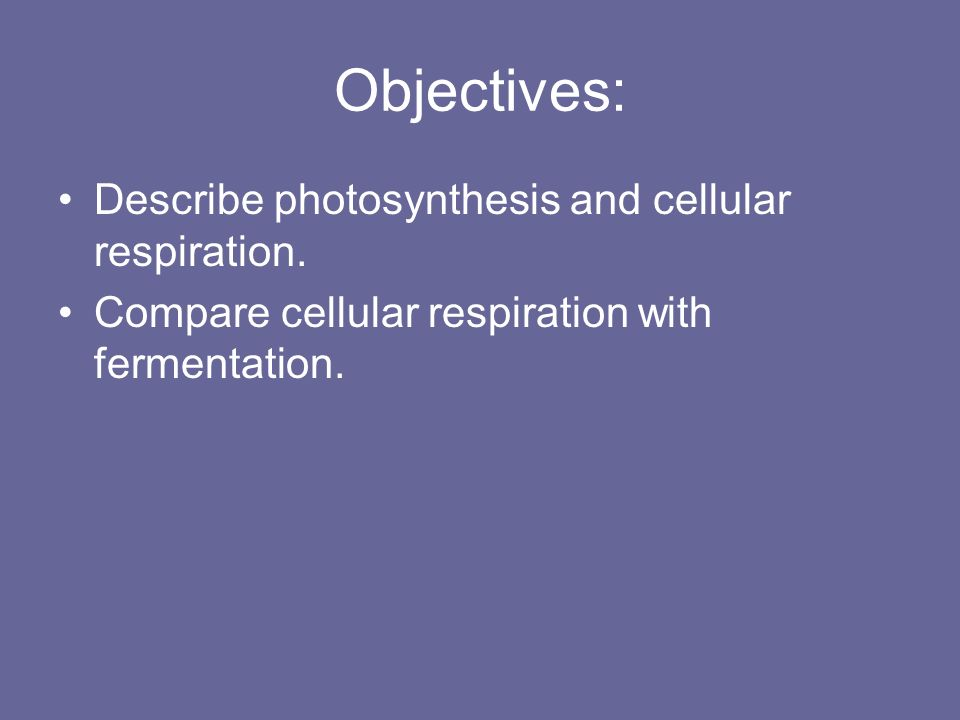 Objectives: Describe photosynthesis and cellular respiration.