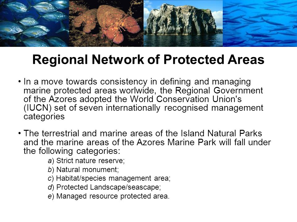 Regional Network of Protected Areas