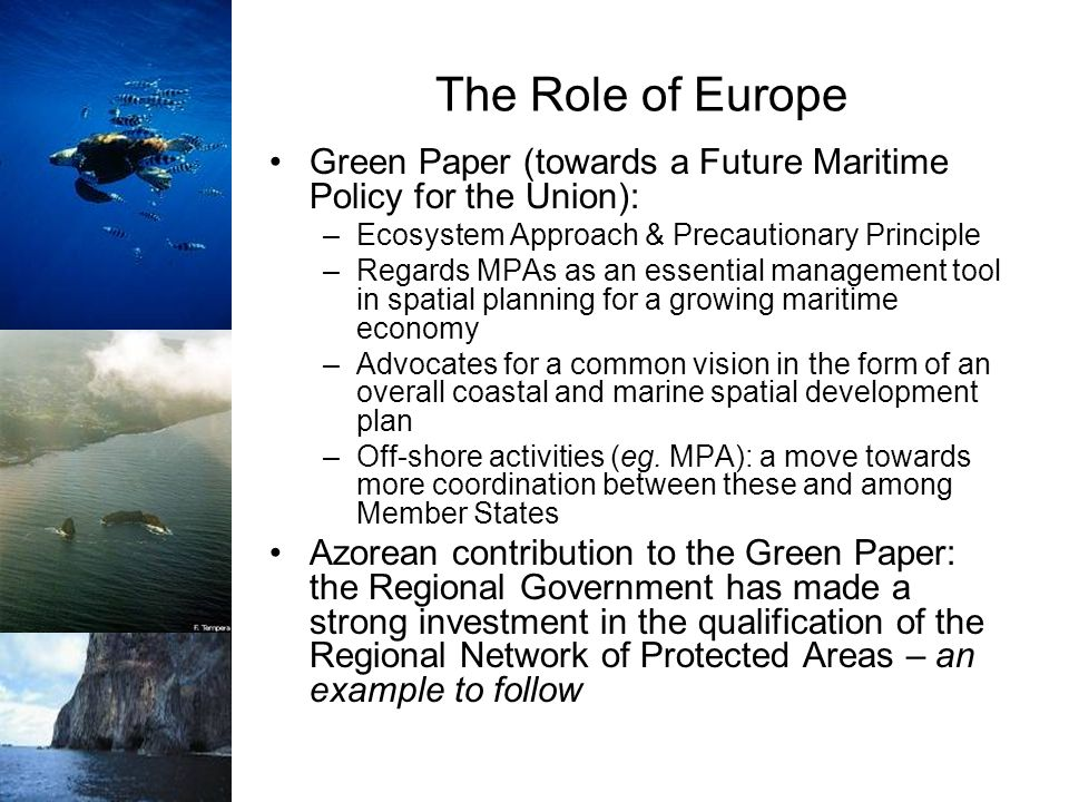 The Role of Europe Green Paper (towards a Future Maritime Policy for the Union): Ecosystem Approach & Precautionary Principle.