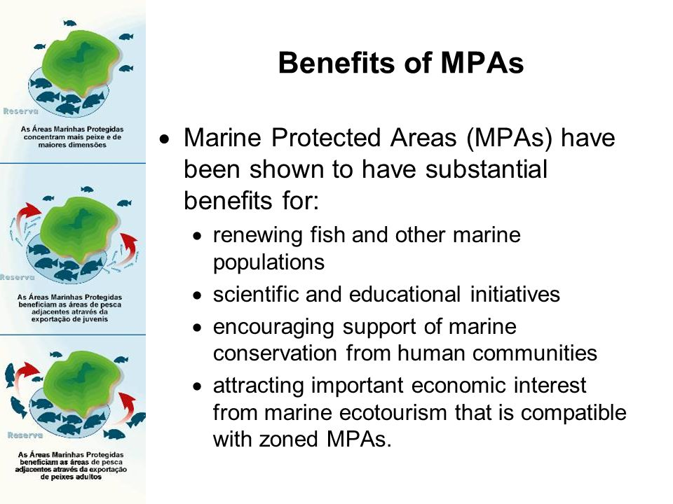 Benefits of MPAs Marine Protected Areas (MPAs) have been shown to have substantial benefits for: renewing fish and other marine populations.