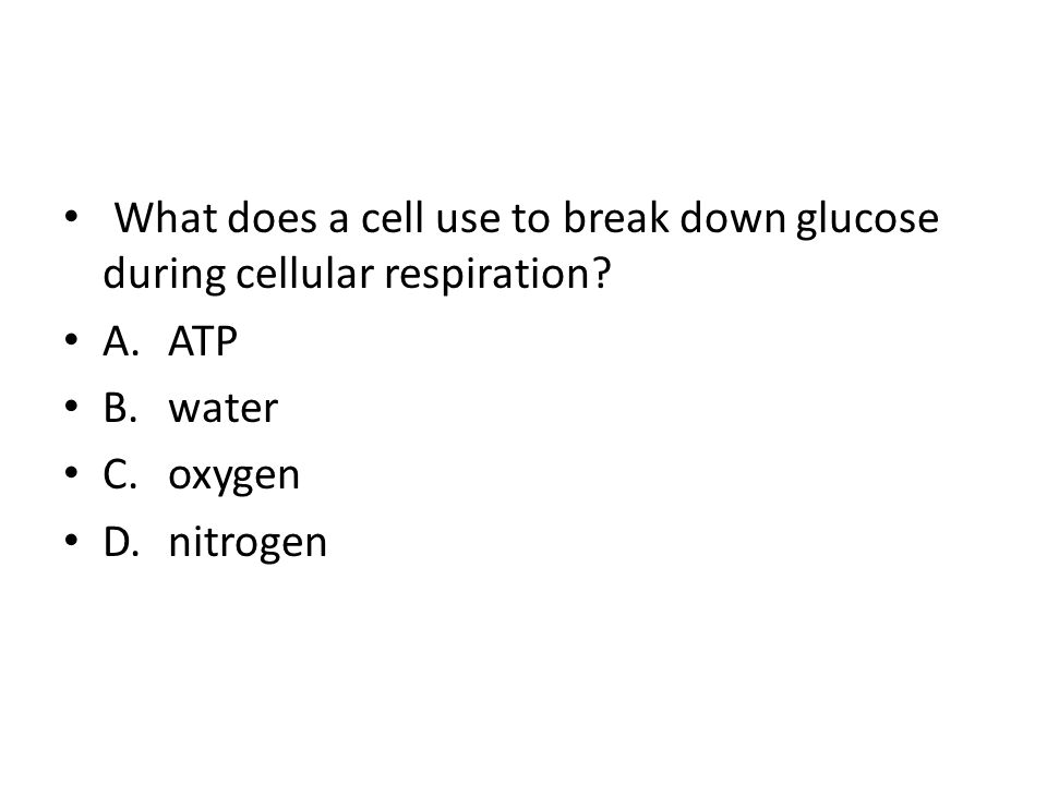 1.6 Review Set Photosynthesis/Cellular Respiration - ppt download