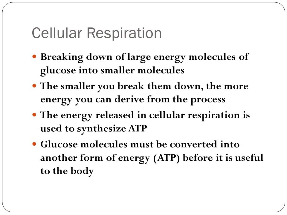 7.1/7.2 Importance of Cellular Respiration & Glycolysis - ppt ...