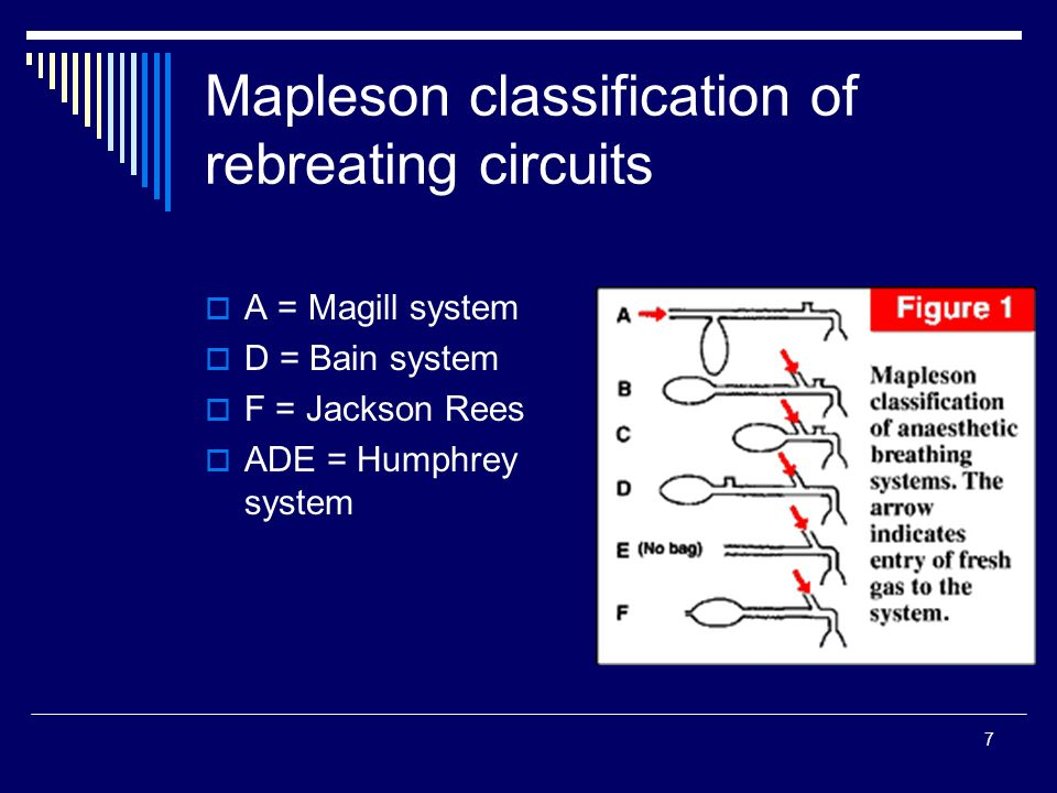 Circuito Jackson Rees : Anaesthesia breathing circuits ppt video online download