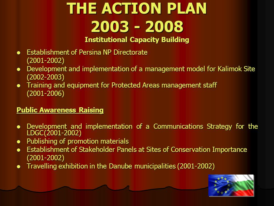 THE ACTION PLAN 2003 - 2008 Institutional Capacity Building