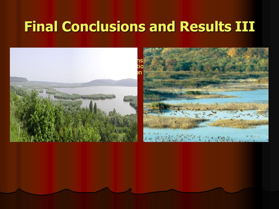 Final Conclusions and Results III