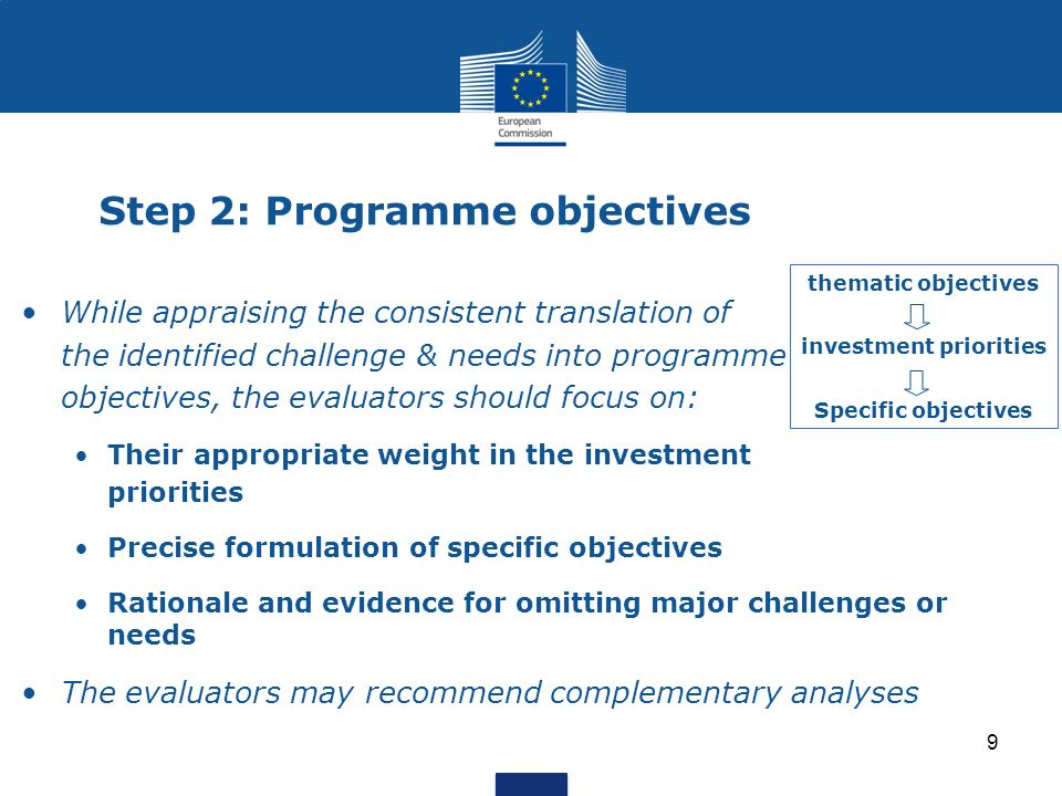 Step 2: Programme objectives