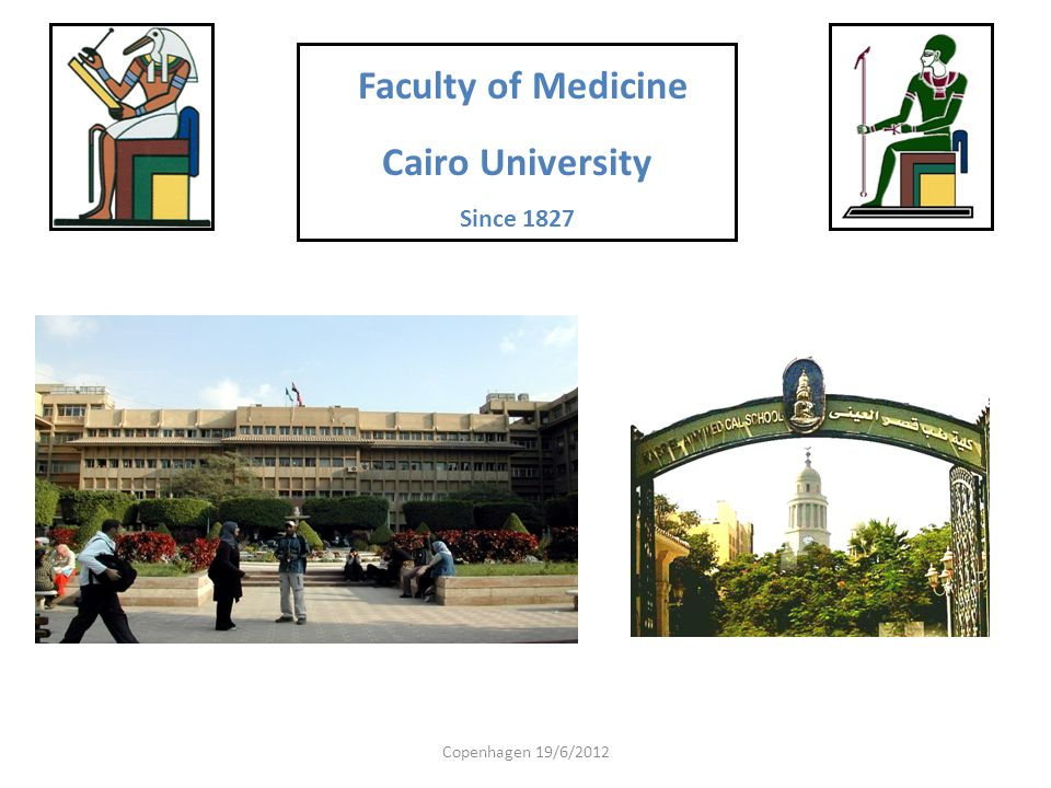 Faculty of Medicine Cairo University Since 1827 Copenhagen 19/6/2012