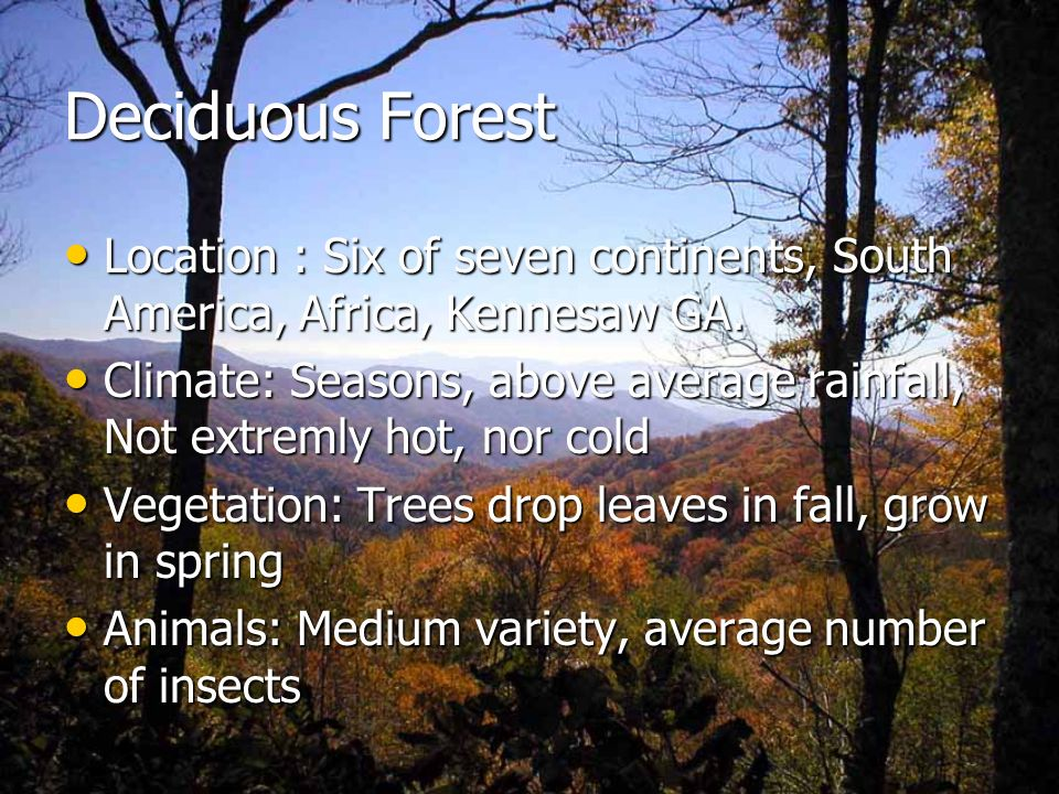Deciduous Forest Location : Six of seven continents, South America, Africa, Kennesaw GA.