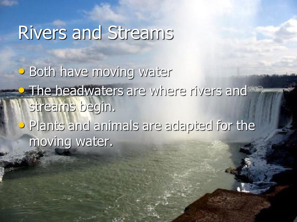 Rivers and Streams Both have moving water