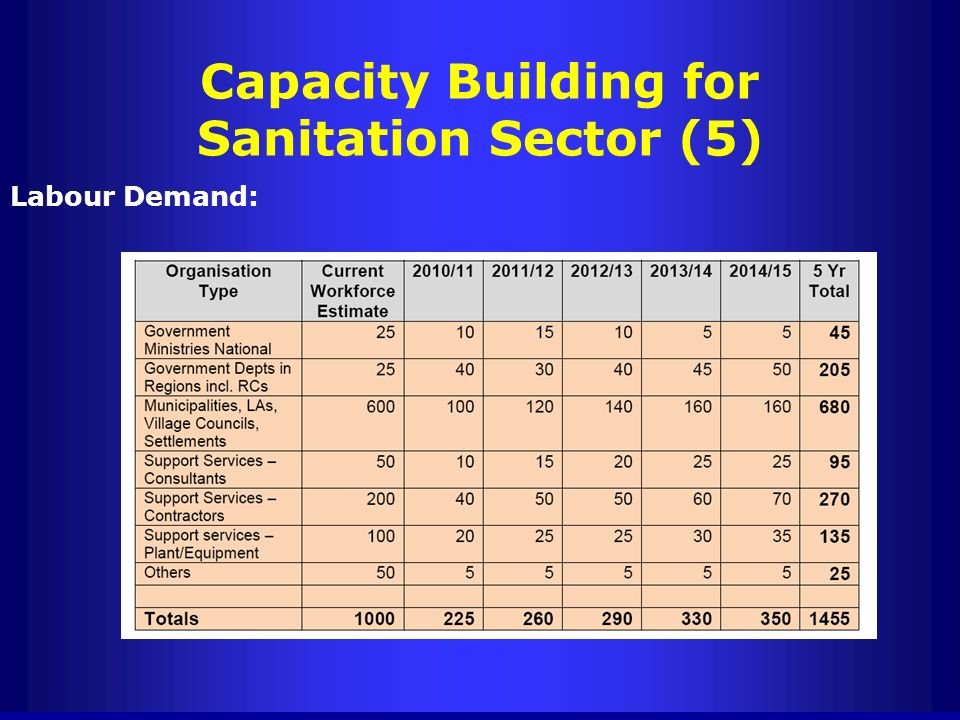 Capacity Building for Sanitation Sector (5)