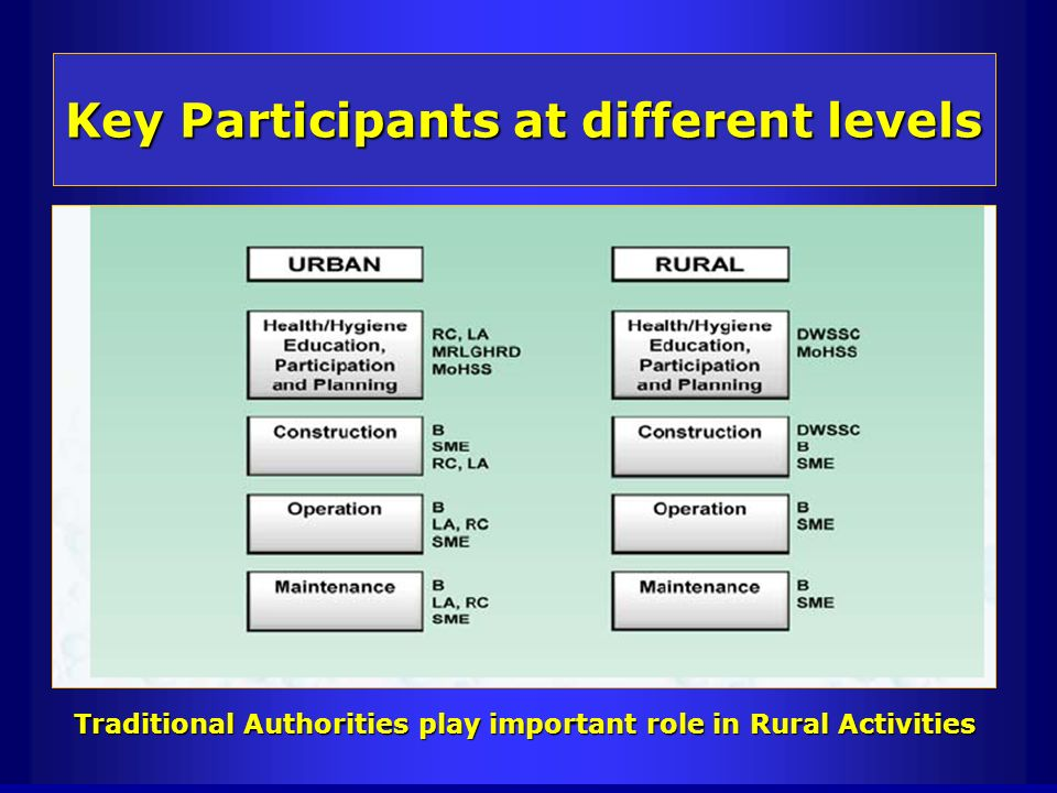 Key Participants at different levels
