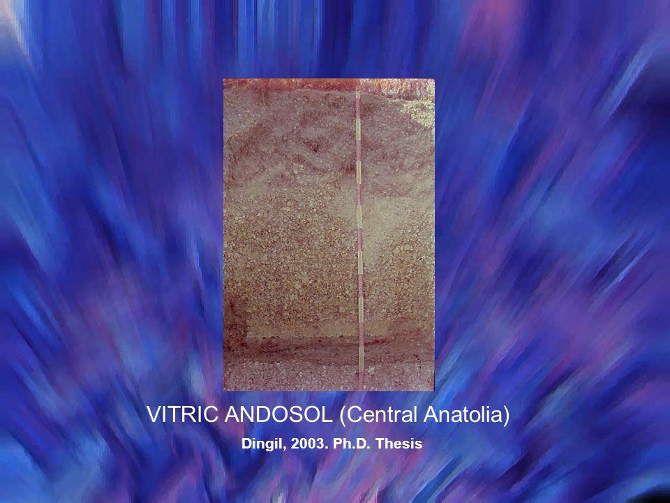 VITRIC ANDOSOL (Central Anatolia)