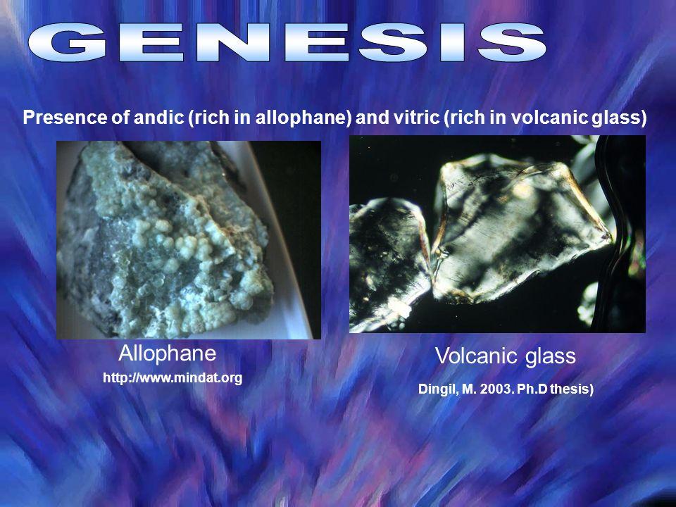 GENESIS Allophane Volcanic glass
