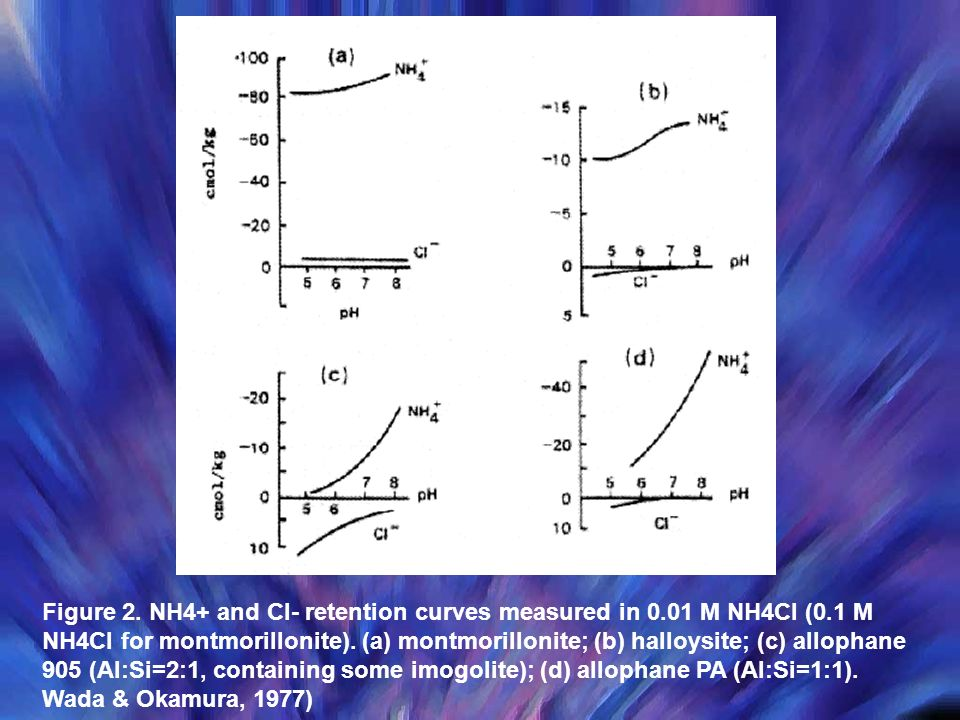 Figure 2. NH4+ and Cl- retention curves measured in M NH4Cl (0