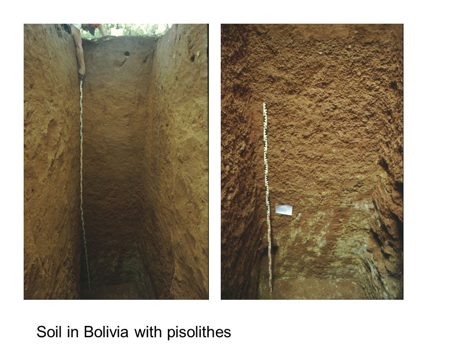 Soil in Bolivia with pisolithes