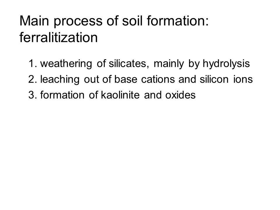 Main process of soil formation: ferralitization