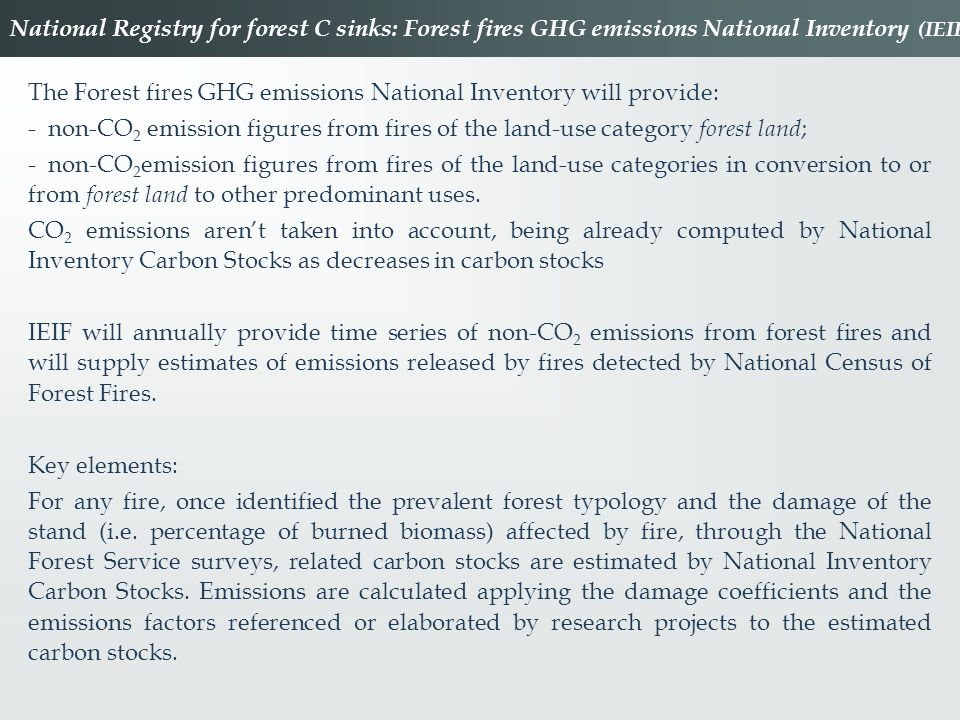 National Registry for forest C sinks: Forest fires GHG emissions National Inventory (IEIF)