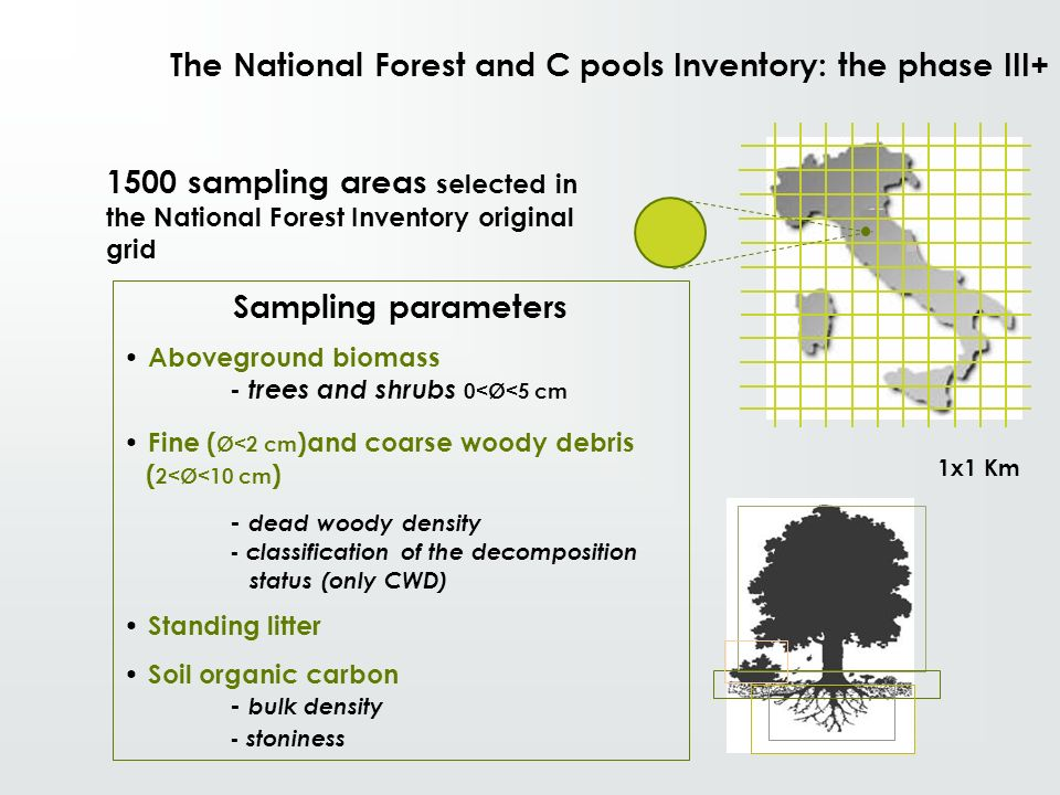 The National Forest and C pools Inventory: the phase III+