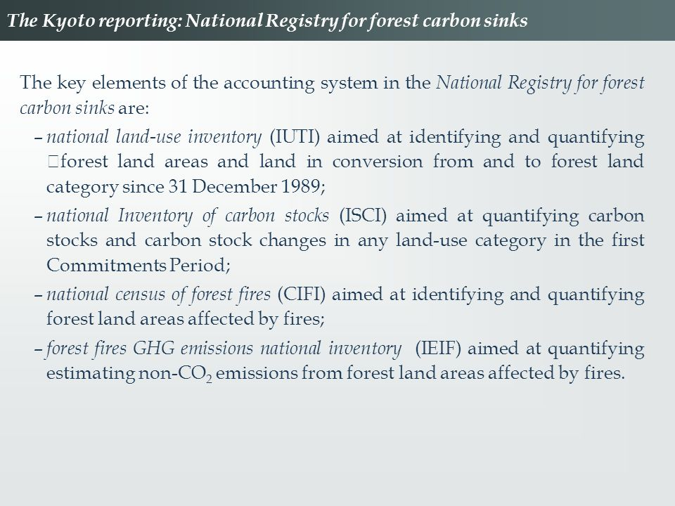 The Kyoto reporting: National Registry for forest carbon sinks