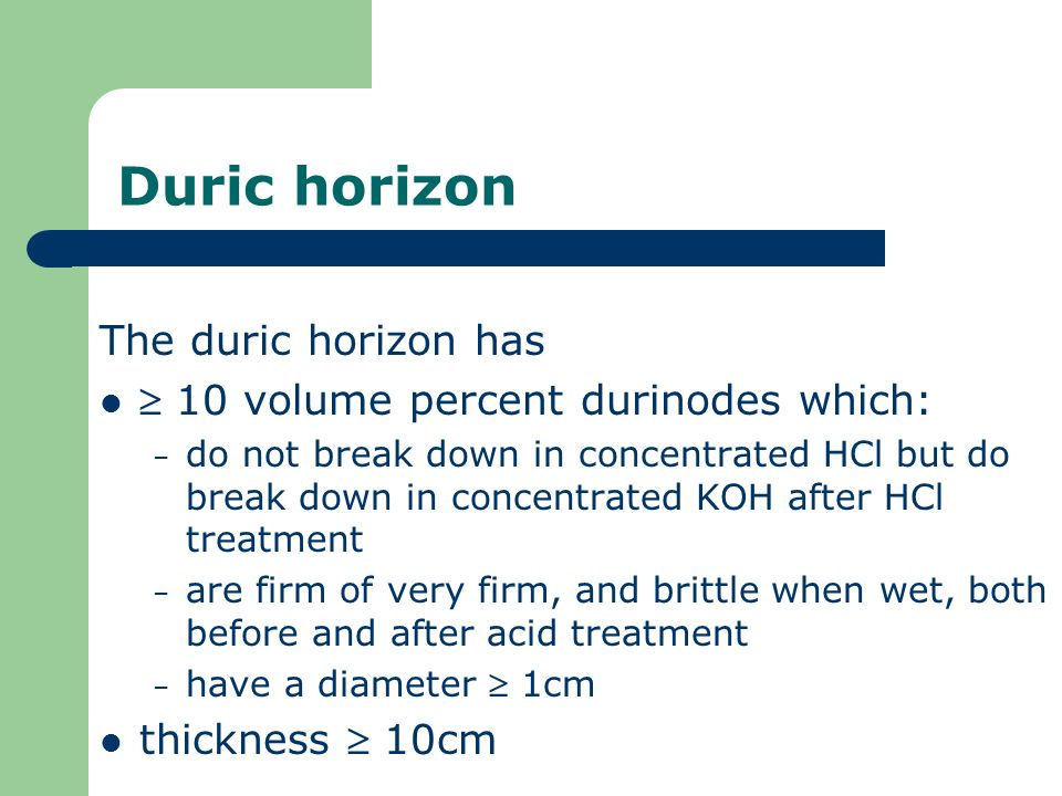 Duric horizon The duric horizon has