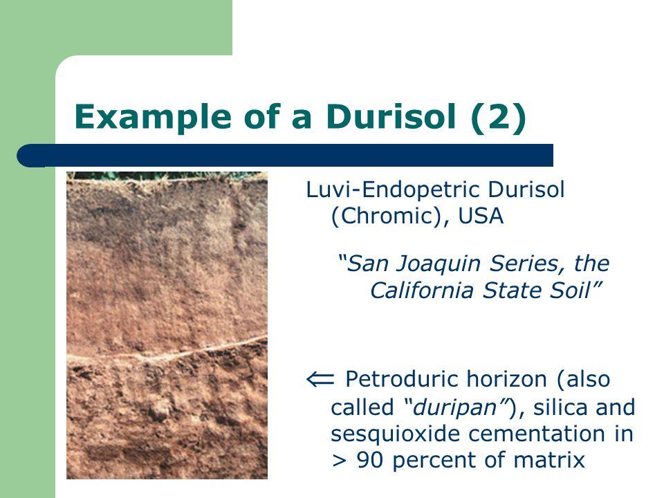 San Joaquin Series, the California State Soil