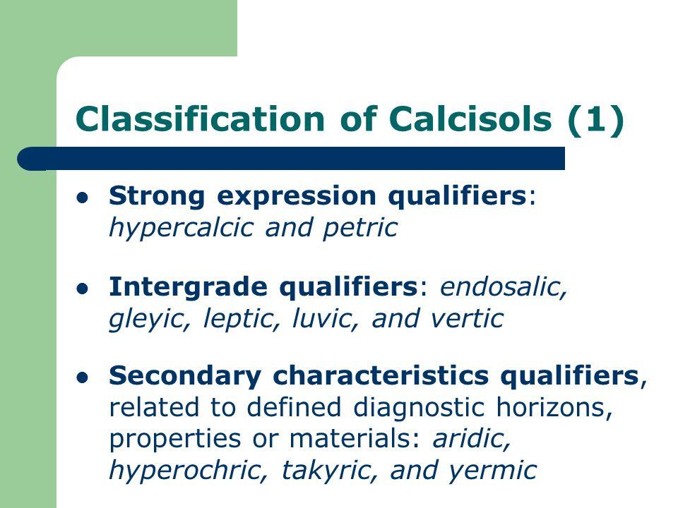 Classification of Calcisols (1)