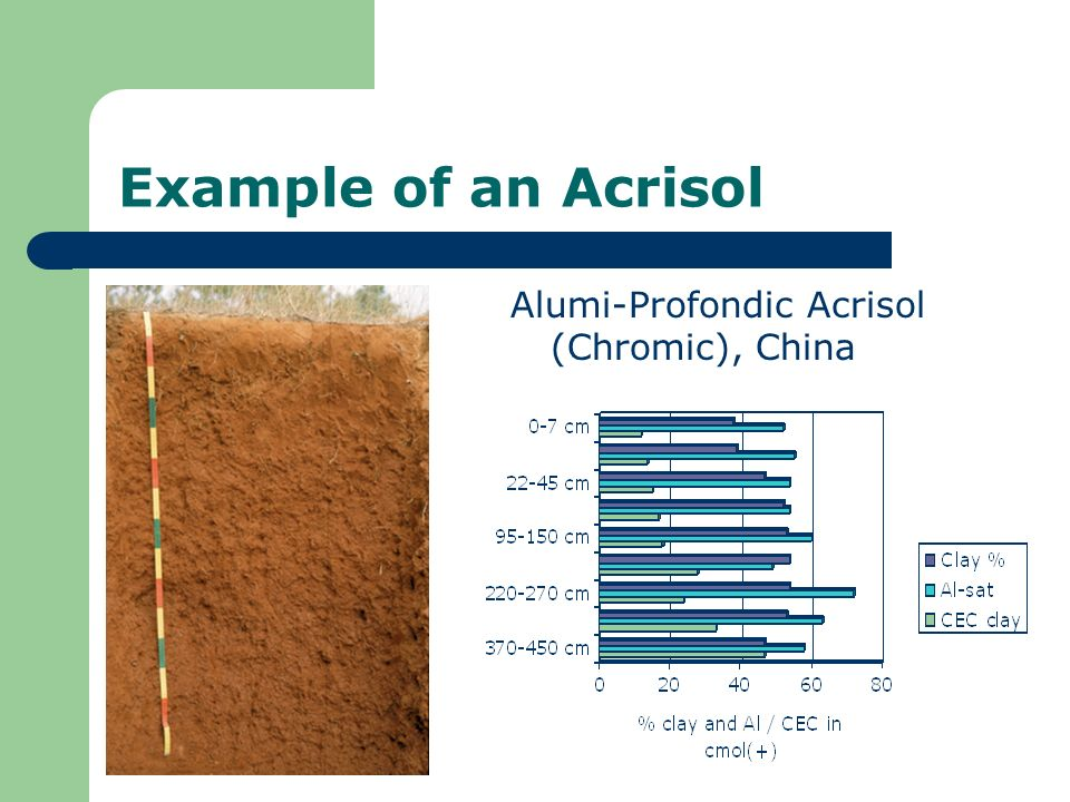 Example of an Acrisol Alumi-Profondic Acrisol (Chromic), China