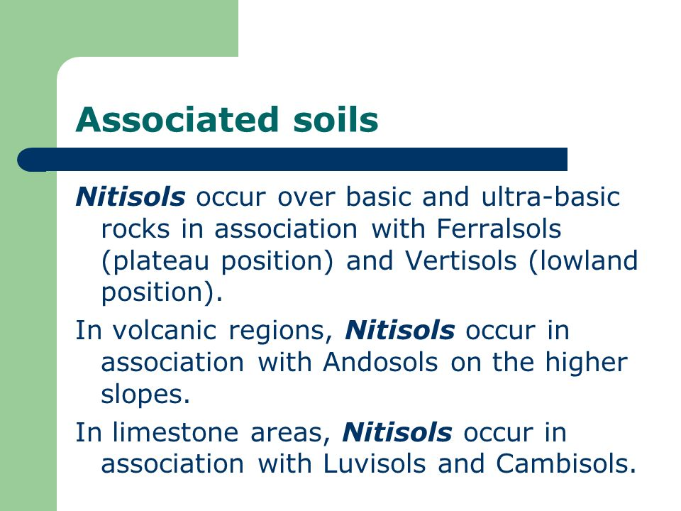 Associated soils Nitisols occur over basic and ultra-basic rocks in association with Ferralsols (plateau position) and Vertisols (lowland position).