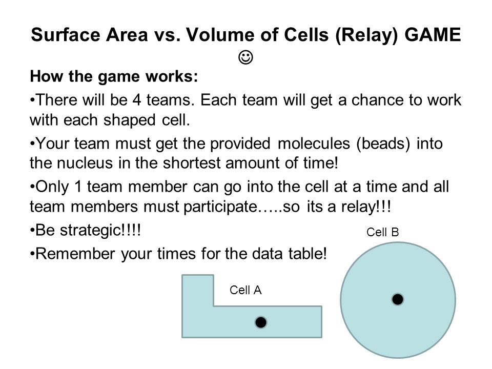 Surface Area vs. Volume of Cells (Relay) GAME 