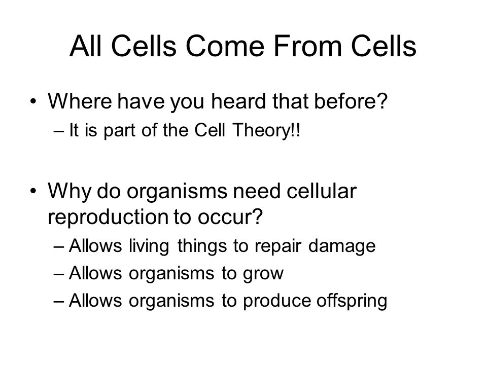 All Cells Come From Cells