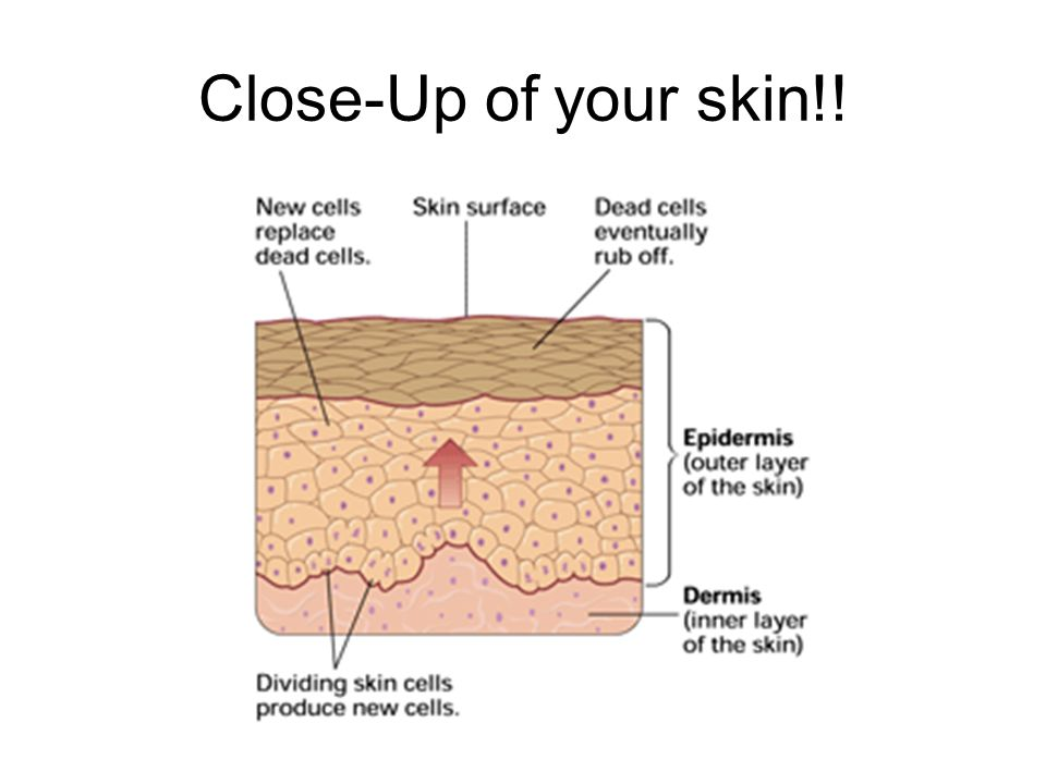 Close-Up of your skin!!