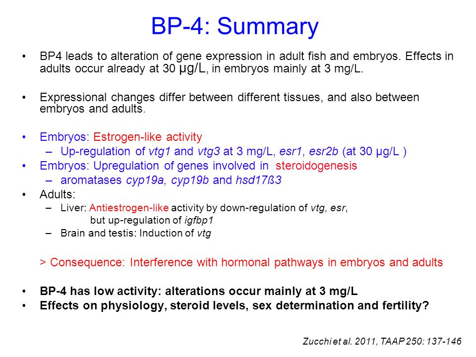 BP-4: Summary