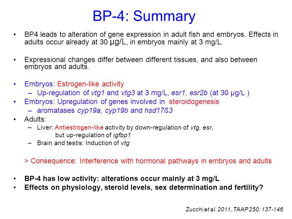 BP-4: Summary