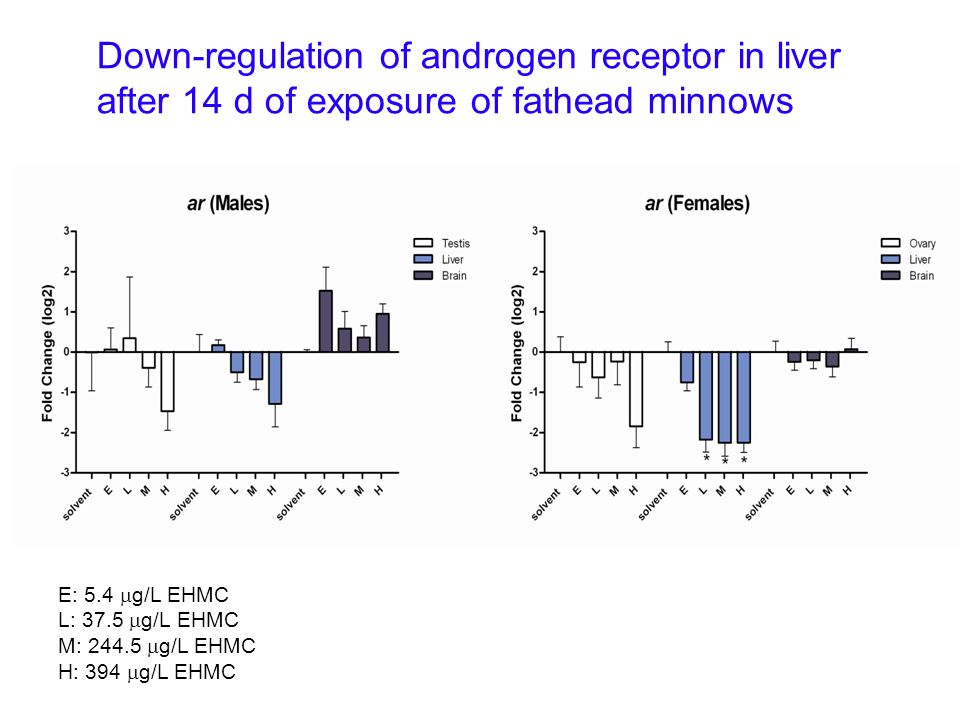 Down-regulation of androgen receptor in liver